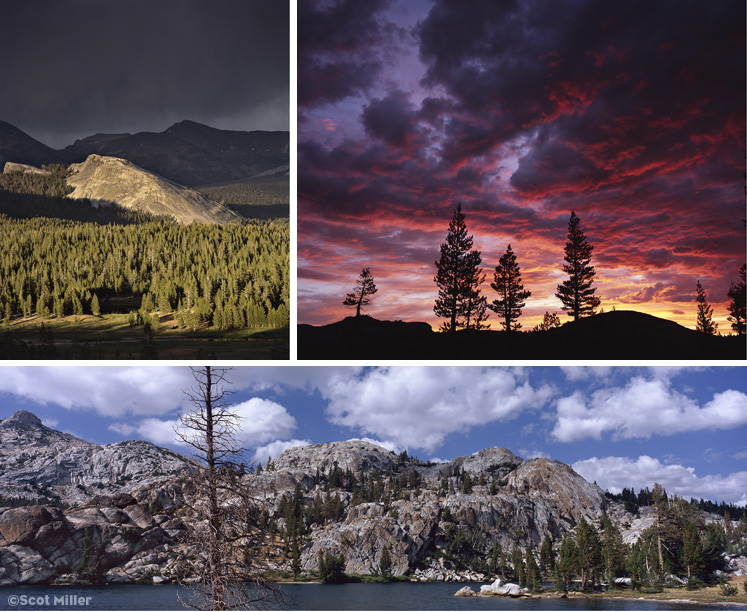 3 photographs by Scot Miller from My First Summer in the Sierra